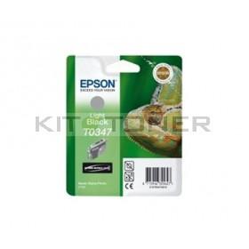Epson C13T059740 - Cartouche d'encre gris de marque T0597
